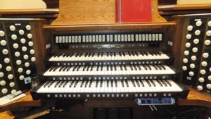 Chalmer's organ
